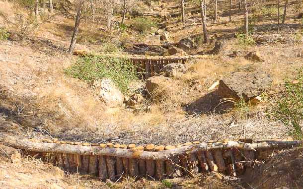 (Castellano) Sostenibilidad consigue una subvención de 37.500€ para restauración forestal en la Sierra