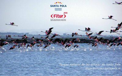 Santa Pola estará presente en el gran Desfile Provincial de la Costa Blanca que acoge Fitur
