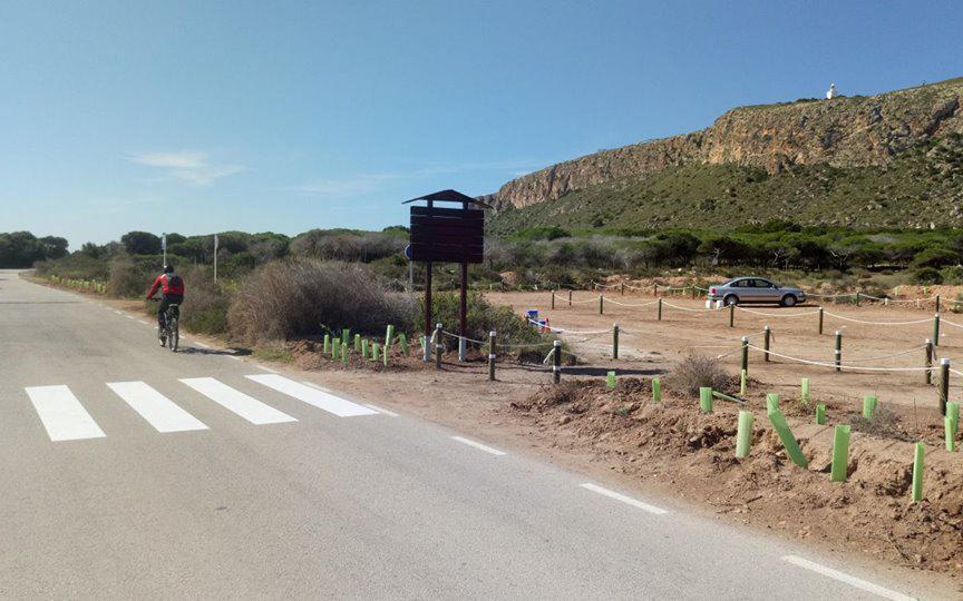 Completada con éxito la primera fase de trabajos para regenerar y poner en valor el Cabo de Santa Pola