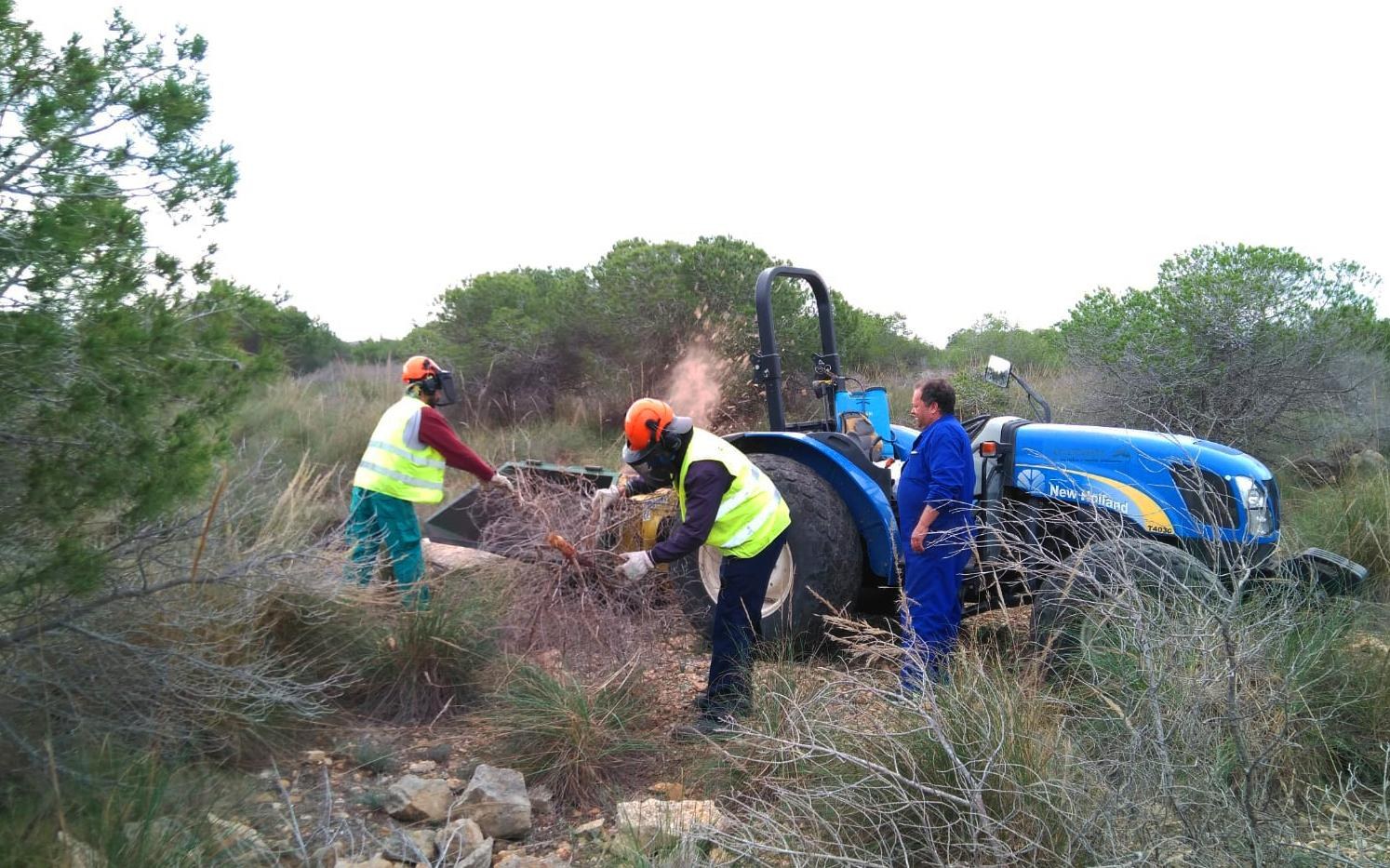 Las actuaciones de mejora forestal de la Sierra de Santa Pola ya han comenzado en la N-332, el barranco de Meleja y el Pla del Rave